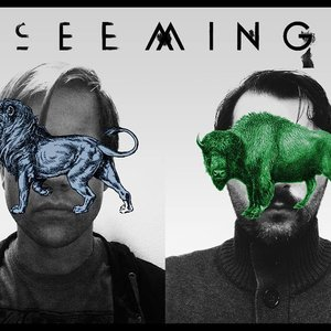 Image for 'Seeming'