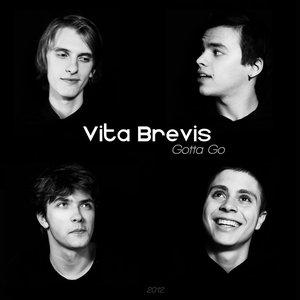 Image for 'vita brevis'
