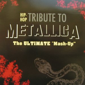 Image for 'Hip-Hop Tribute To Metallica'