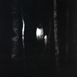 Image for 'Vindkaldr'