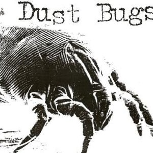 Image for 'Dust Bugs'