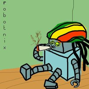 Image for 'The Robotnix'