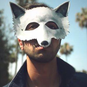 Immagine per 'Wolf Colony'