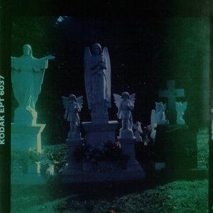 Image for 'BIASCODE'