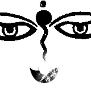 Image for 'PsyNet F48.1'