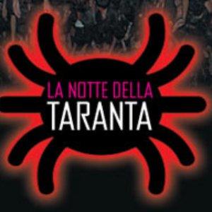 Image for 'Orchestra Popolare La Notte Della Taranta'