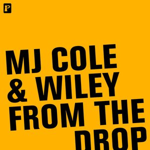 Image for 'MJ Cole & Wiley'