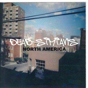Image for 'Dead Simians'