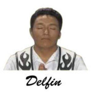 Bild för 'Delfín'