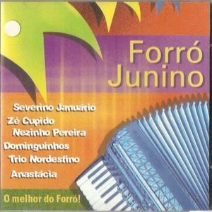 Image pour 'Forró Junino'