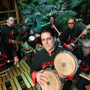 Image for 'The Tikiyaki Orchestra'