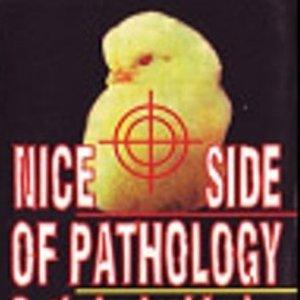 Image for 'NICE SIDE OF PATHOLOGY'
