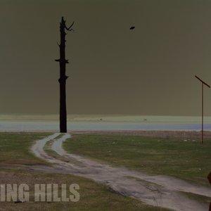 Image for 'Flying Hills'