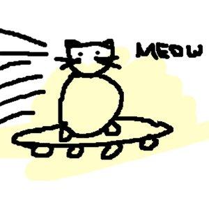 Image for 'Skateboard Cat'