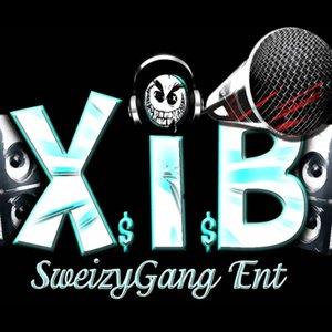 Image for 'XIB'
