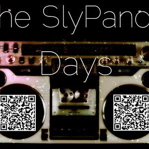 Immagine per 'The SlyPanda'