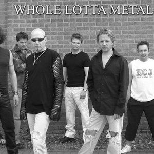 Image for 'whole lotta metal'
