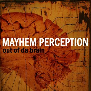 Image for 'Mayhem Perception'
