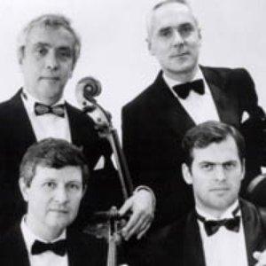 Image for 'Kocian Quartet'