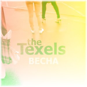 Image for 'The Texels'