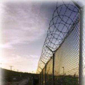 Image for 'Guantanamo'