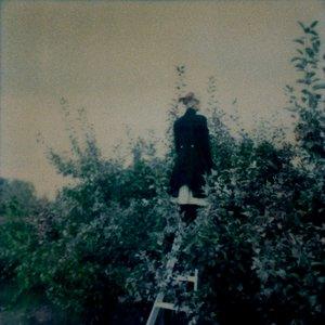 Immagine per 'Necktarium'