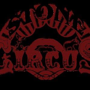 Image for 'stone circus (austria)'