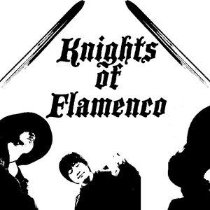 Bild für 'Knights of Flamenco'