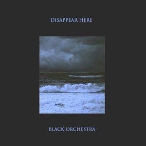 Immagine per 'Black Orchestra'