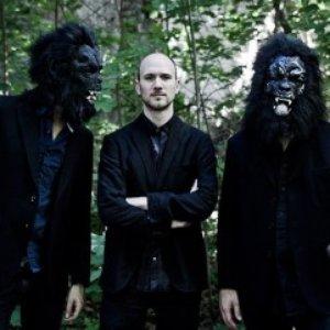 Image for 'Gorilla Mask'