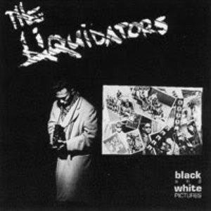Image for 'The Liquidators'