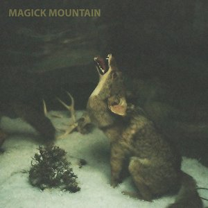 Image for 'Magick Mountain'