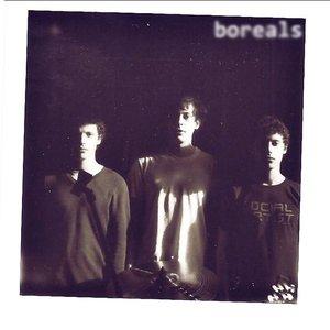 Bild för 'Boreals'