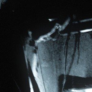 Image pour 'DATHURA'