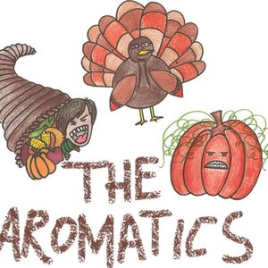 Image for 'The Aromatics'