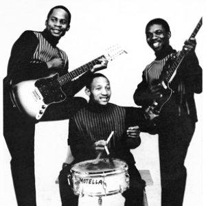 Image for 'Makgona Tsohle Band'