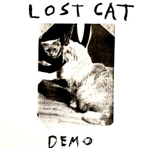 Image for 'Lost Cat'