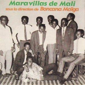 Image for 'orquesta maravillas de mali'