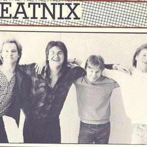 Image for 'The Beatnix'
