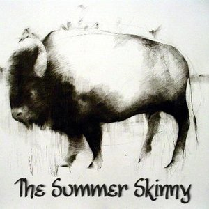 Image for 'The Summer Skinny'