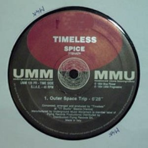 Image for 'Timeless Spice'