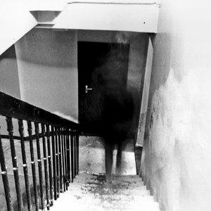 Bild für 'Jodi Cave'