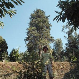Image pour 'Martinho Lucas Pires e O Deserto Branco'