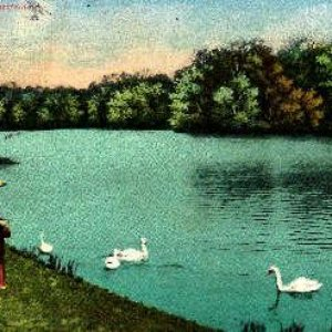 Image for 'Das Fieber'