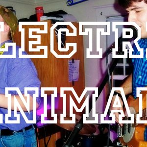 Image for 'electric animal'
