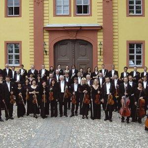 Image for 'Vogtland Philharmonic Orchestra Greiz-Reichenbach'