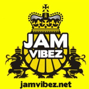 Image for 'jam vibez'