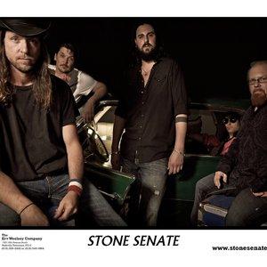 Image for 'Stone Senate'