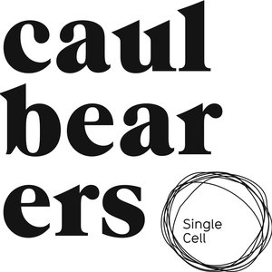Image for 'Caulbearers'