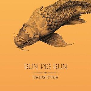 Image for 'Run Pig Run'